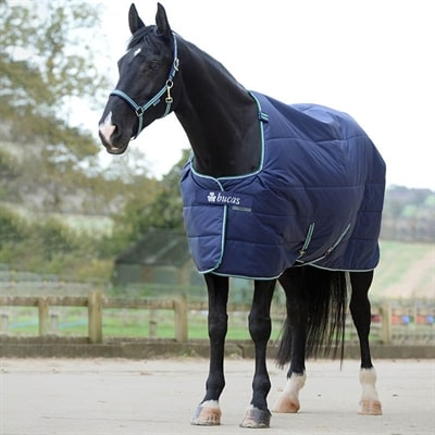 Bucas rugs for the horse - Online
